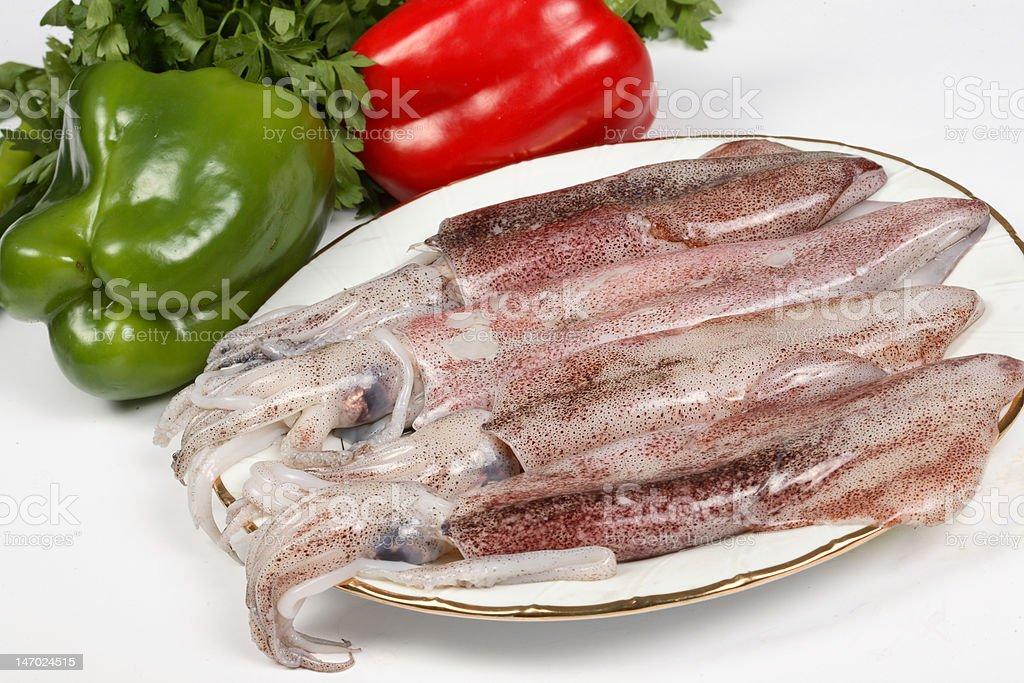 squid fish royalty-free stock photo