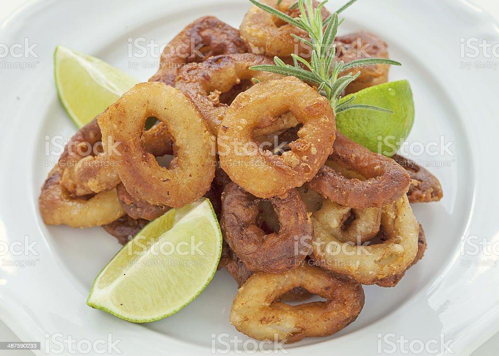 squid stock photo
