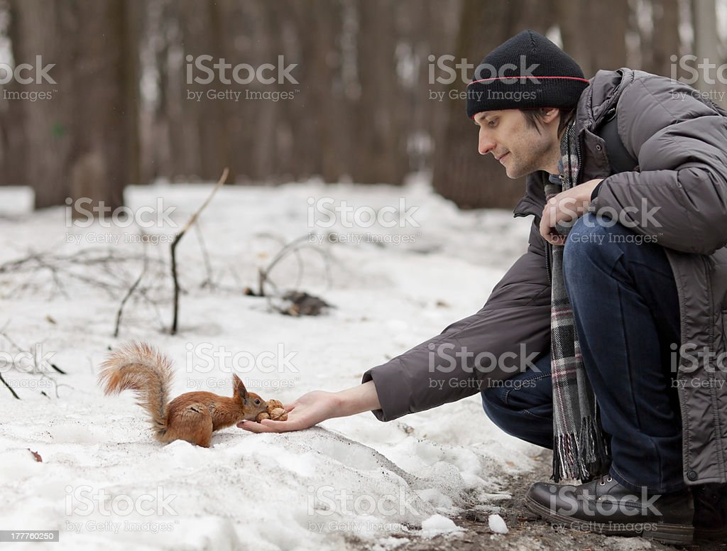 Squirrel and Boy stock photo