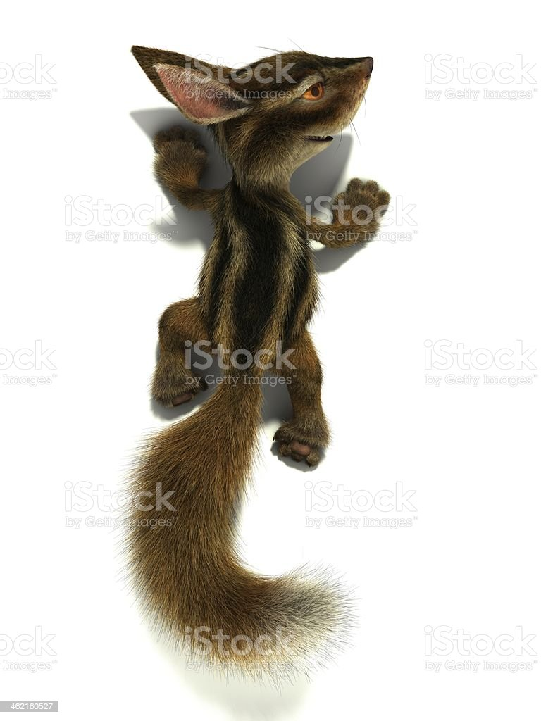 Squirrel climbs the wall stock photo