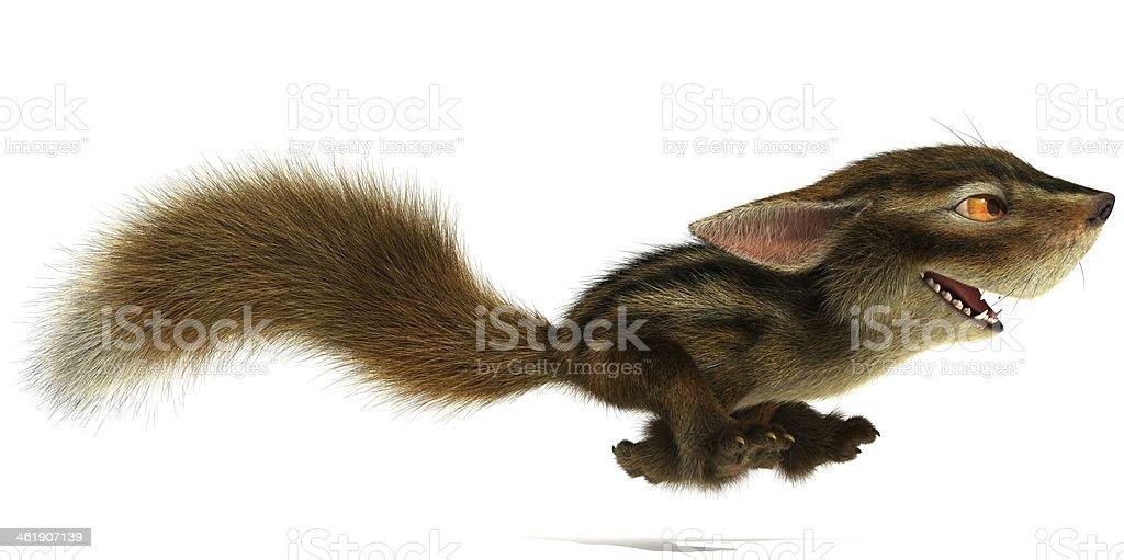 Squirrel runs stock photo
