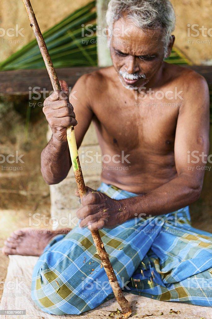 Sri Lankan man preparing cinnamon sticks royalty-free stock photo