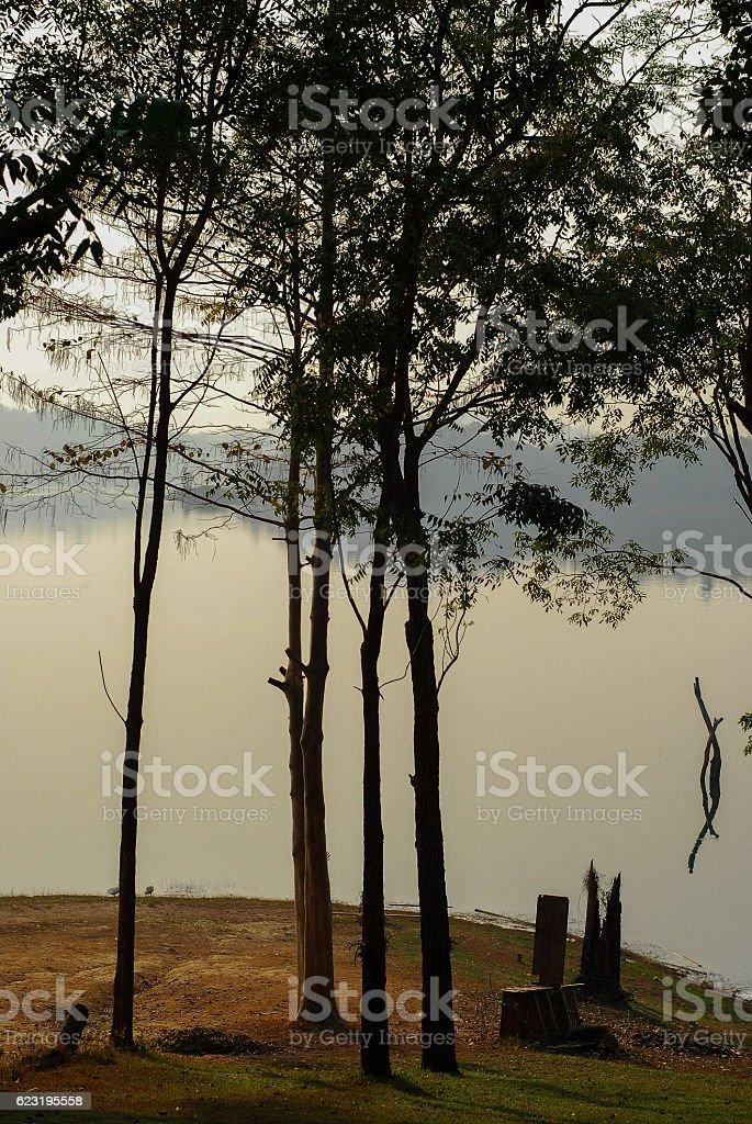Srinakarin National park Kanchanaburi stock photo