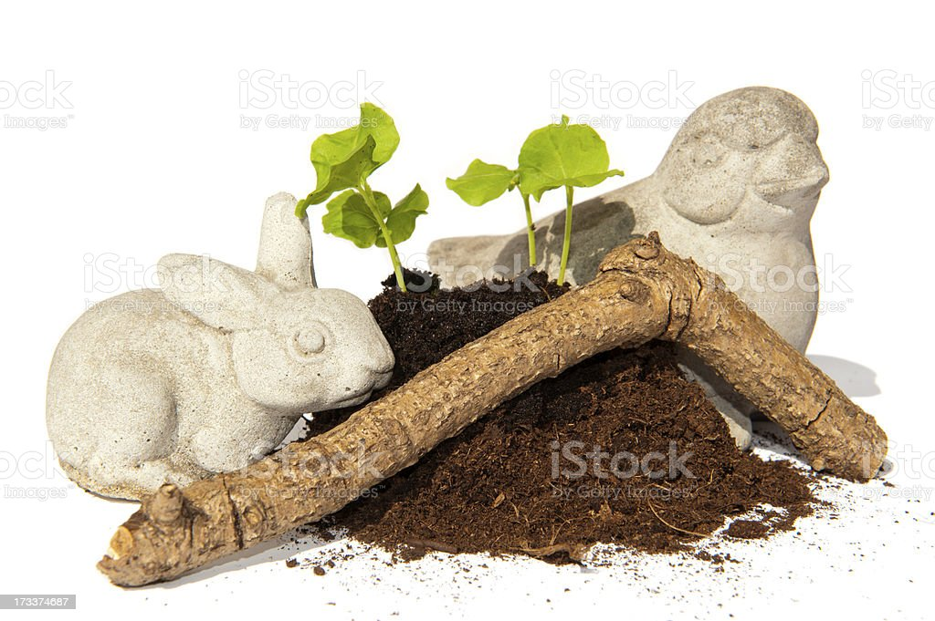 Sseed cutting bird rabbit and branch stock photo