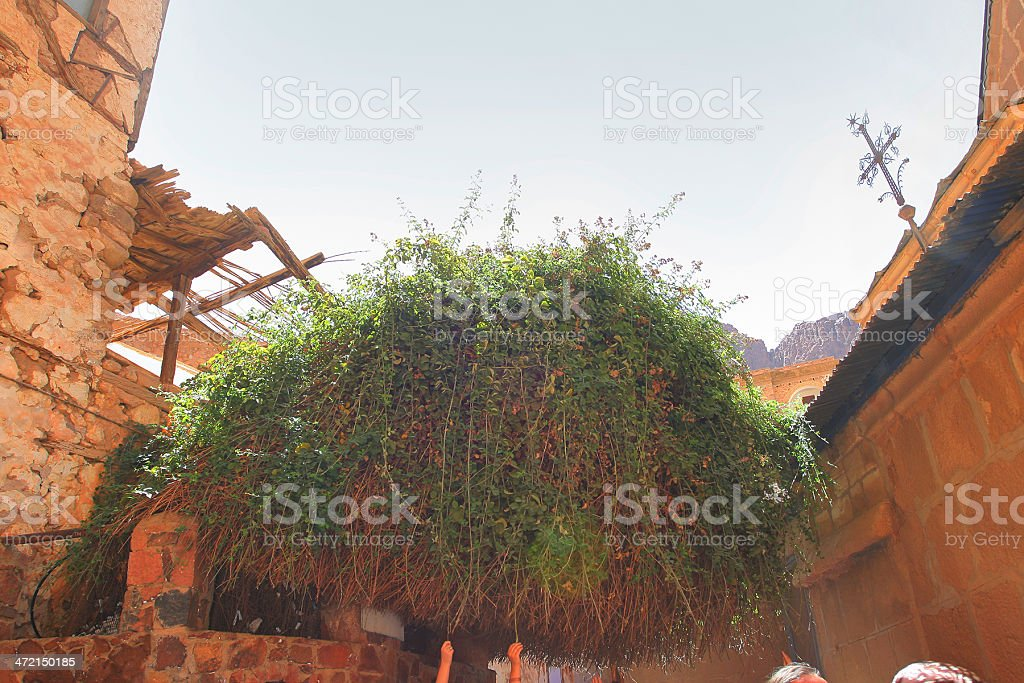 St Catherine's Monastery stock photo