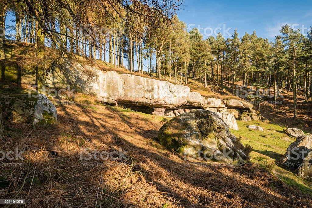 St Cuthbert's Cave in woodland stock photo