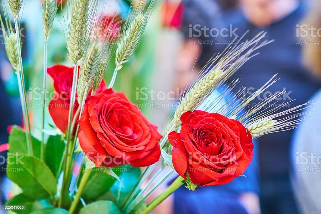 St Jordi roses in Barcelona stock photo
