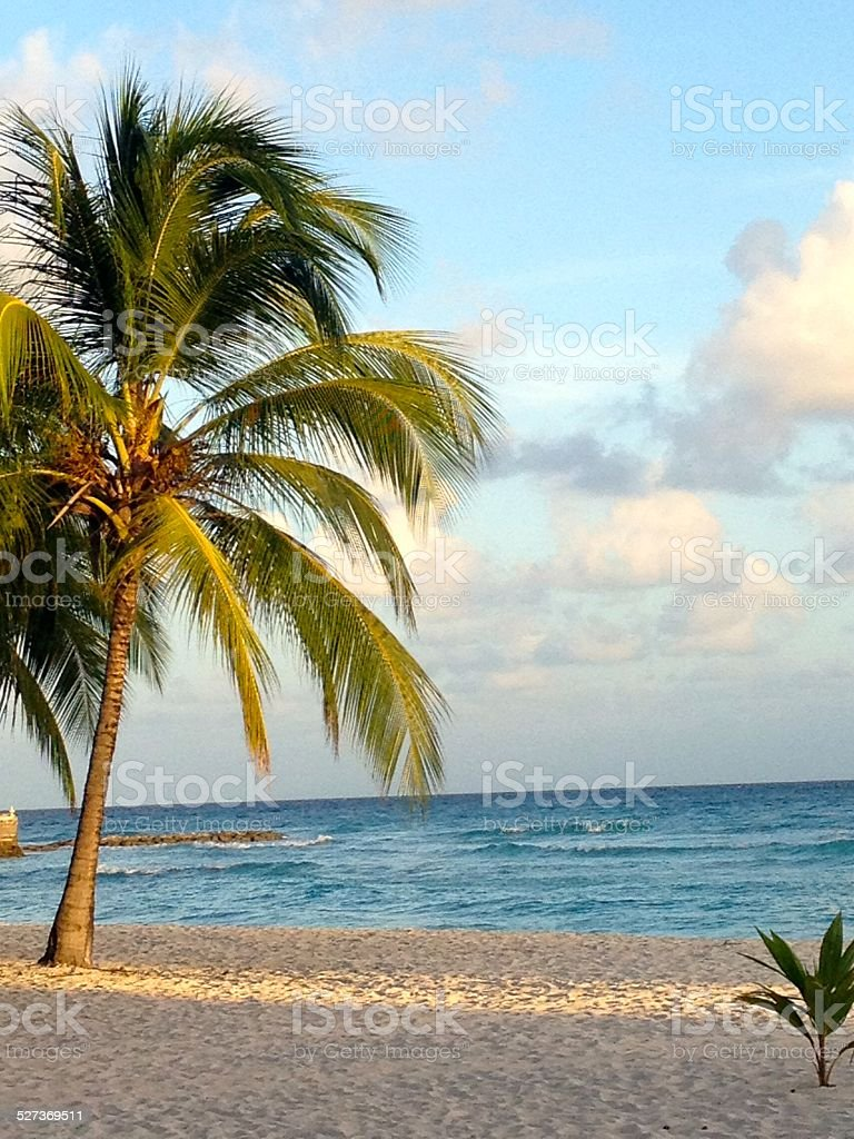 St. Lawrence Gap, Barbados stock photo