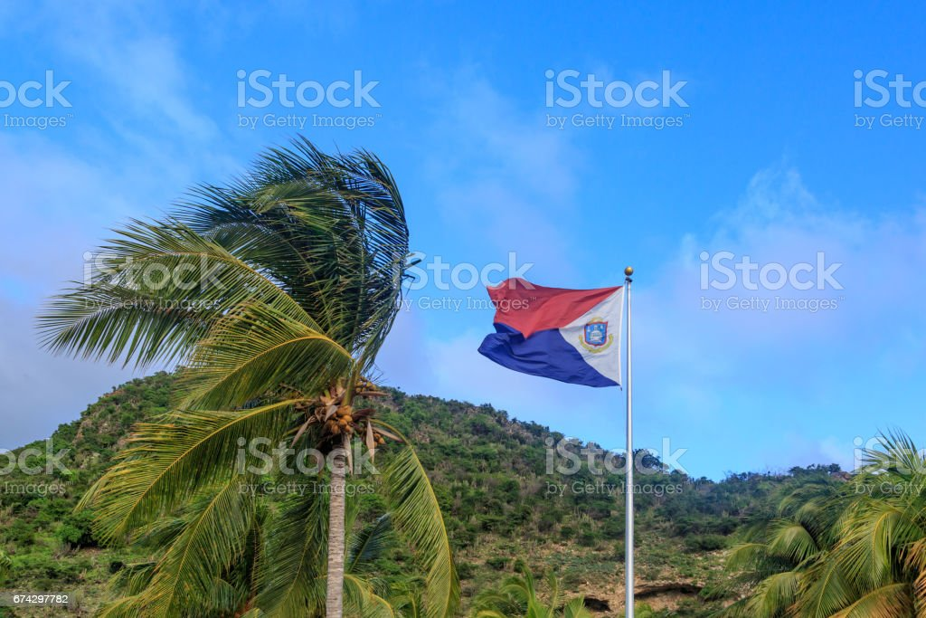 St. Maarten flag with palm tree stock photo