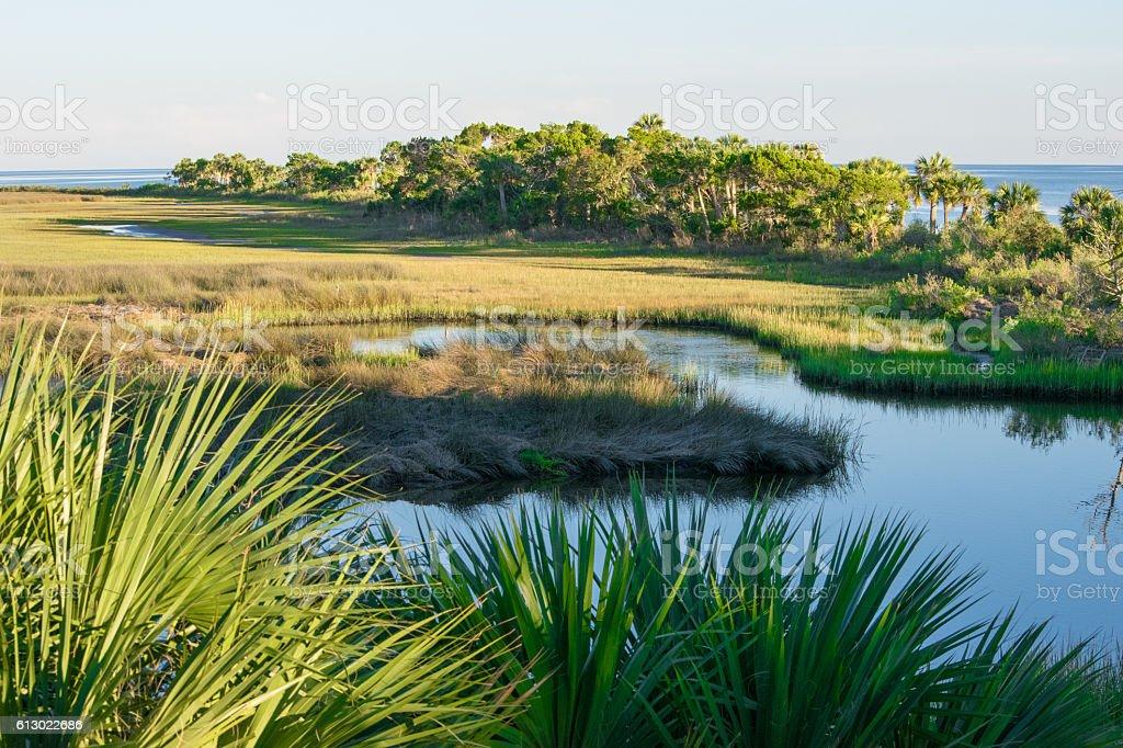St. Marks Wildlife Refuge - Coastal Wetlands stock photo