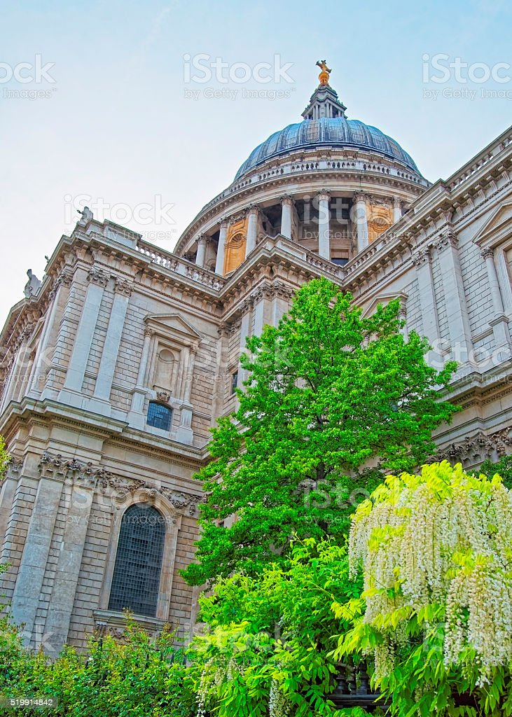 St Paul Cathedral and green trees in London in England stock photo