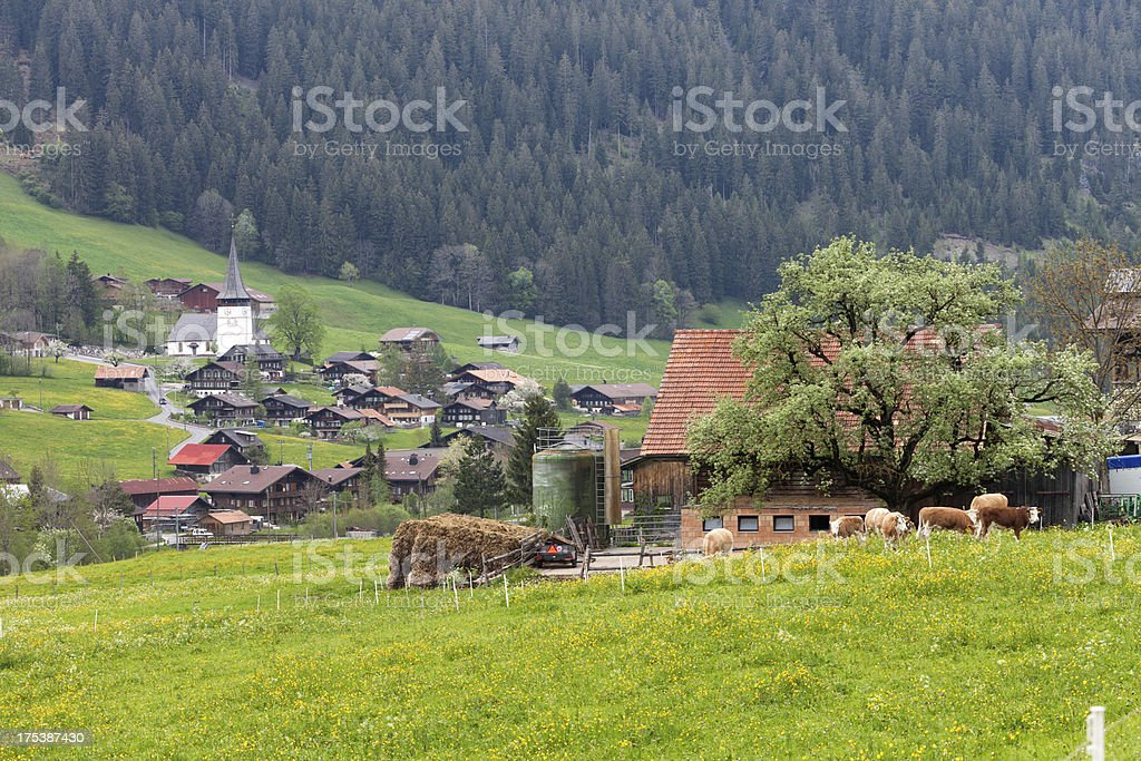 St. Stefan Village, Obersimmental Valley, Swiss Alps, Spring stock photo