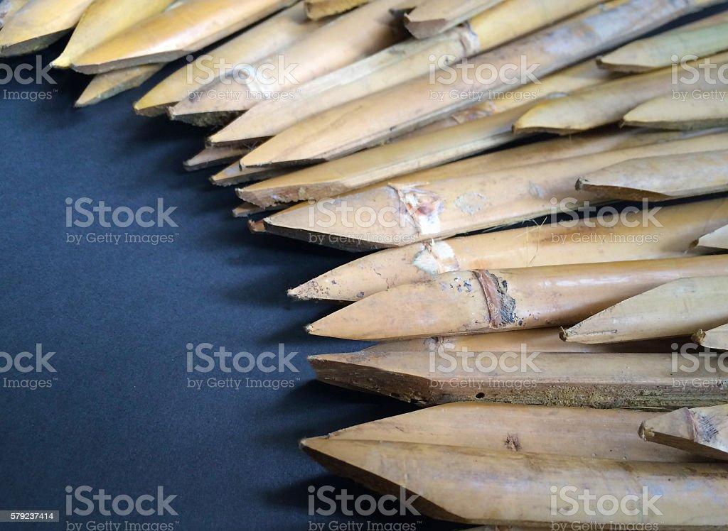 Stab bamboo stock photo