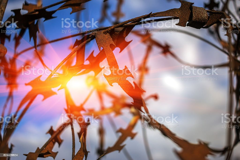 stabbing sharp fence on blurred  background at sunset stock photo