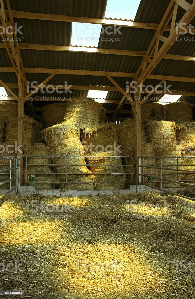 Stable stock photo