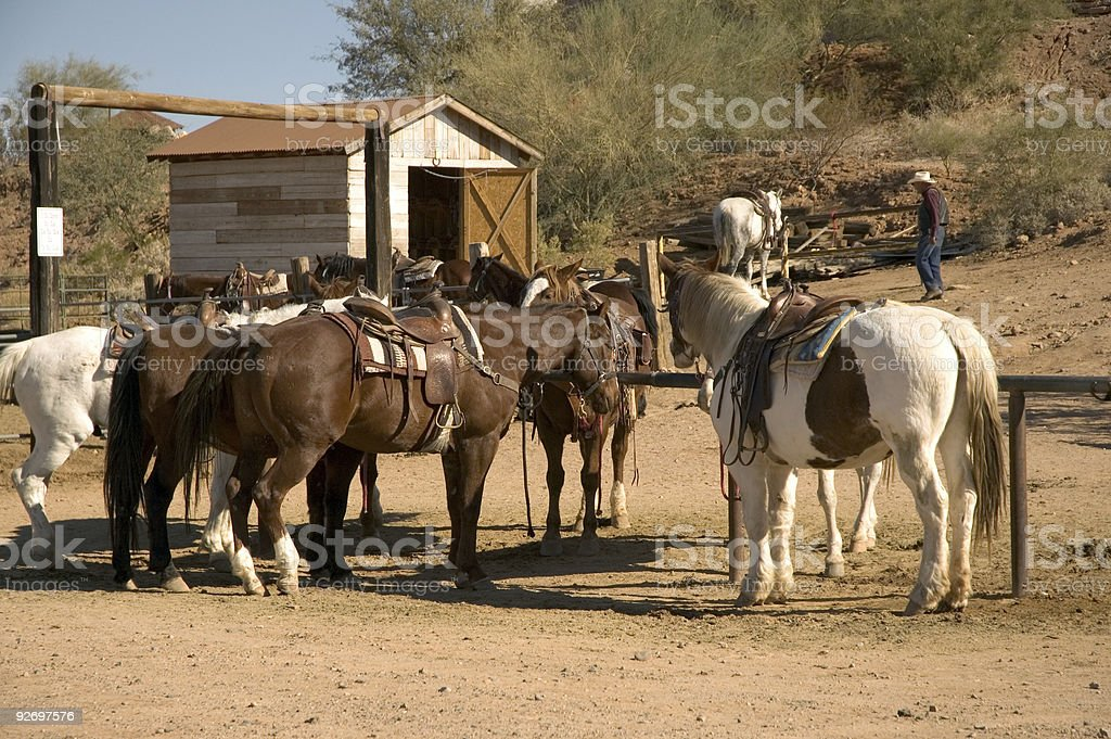 Stables royalty-free stock photo
