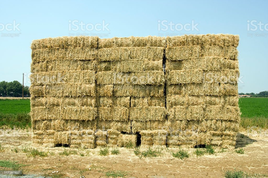 Stack of Alfalfa Bales royalty-free stock photo