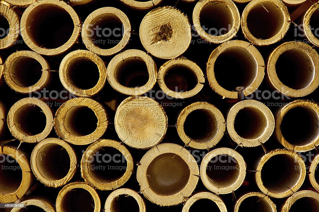 stack of bamboo cuts stock photo