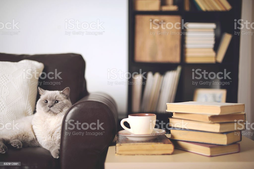 stack of books in home interior stock photo