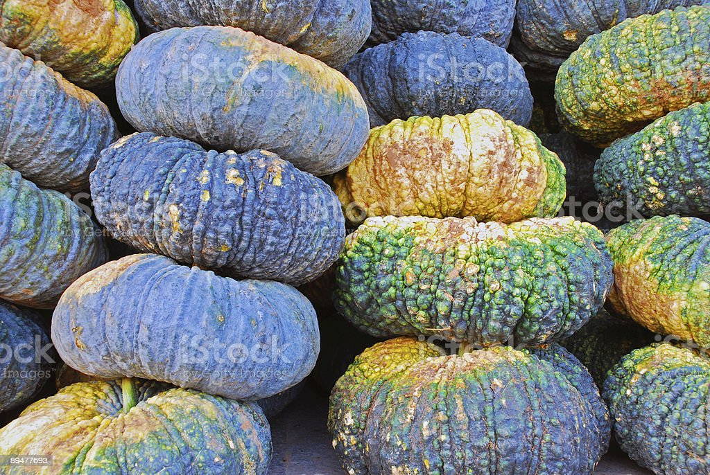 Stack of Colorful Pumkins royalty-free stock photo