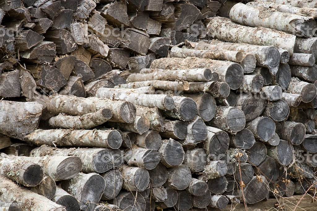 Stack of cut fire wood royalty-free stock photo