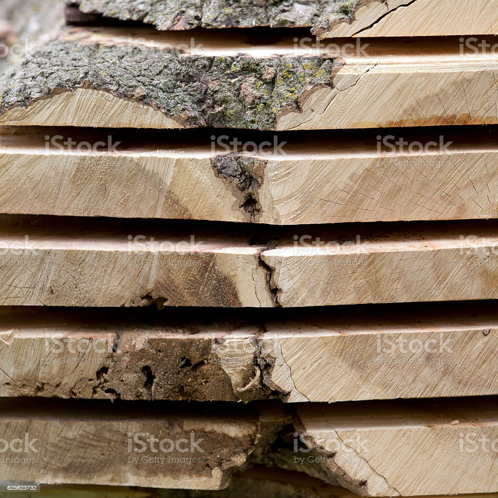 Stack of freshly cut Maple slabs stock photo