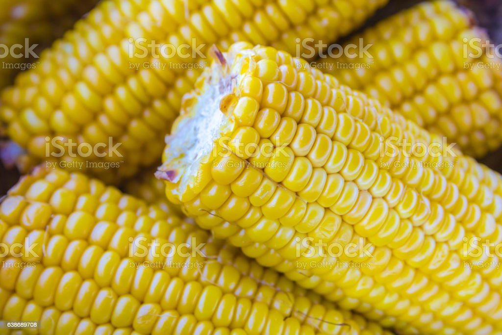 stack of grilled sweet corn cobs stock photo