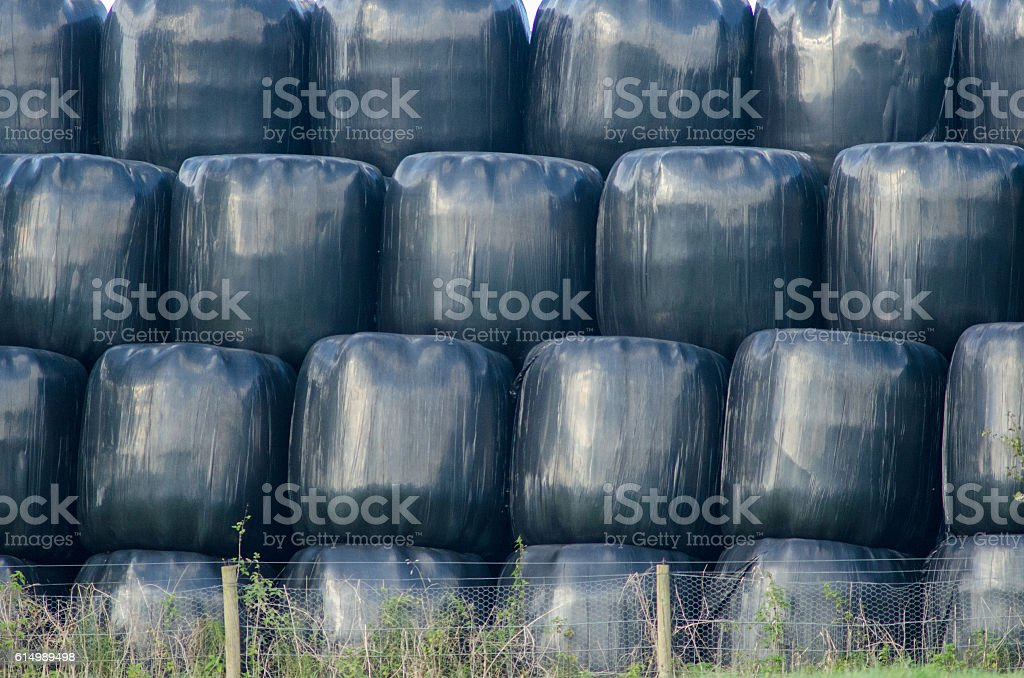 Stack of haylage bales stock photo