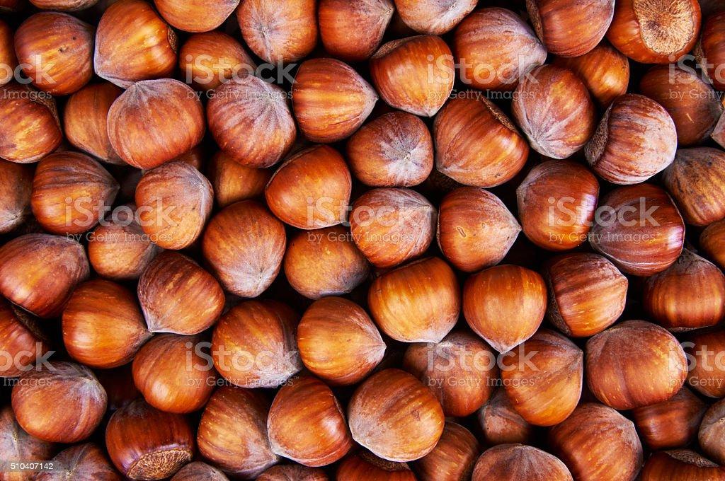 Stack of hazelnuts. Hazelnut background stock photo