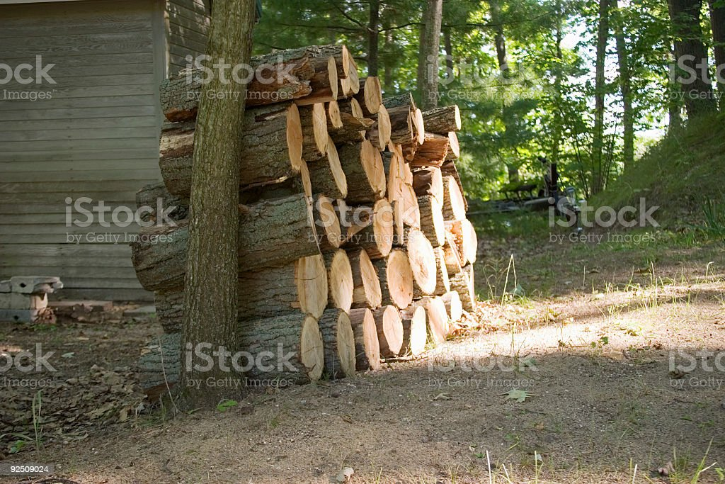 Stack of logs between trees royalty-free stock photo