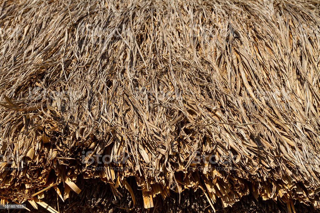 Stack of old dry straw stock photo