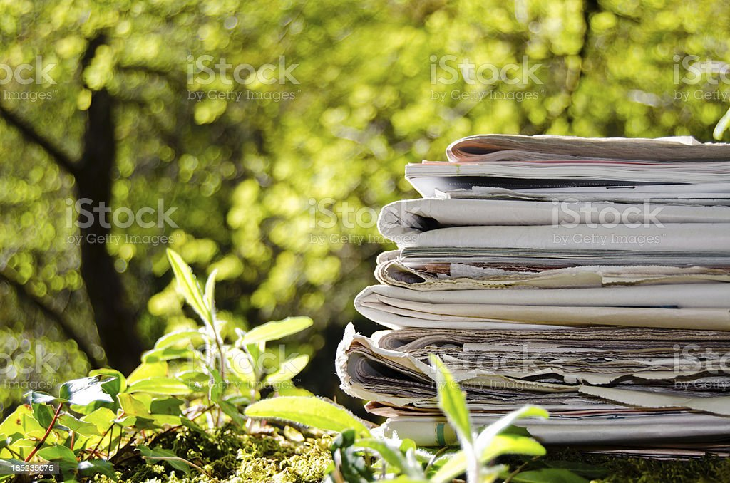 Stack of old newspapers in the middle of the forest. royalty-free stock photo
