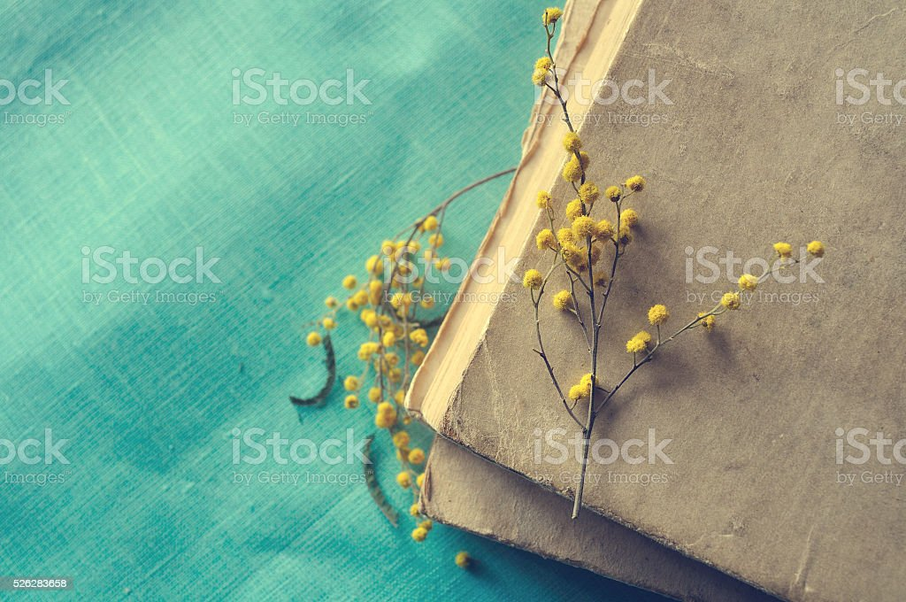 Stack of old worn book with small mimosa branches stock photo