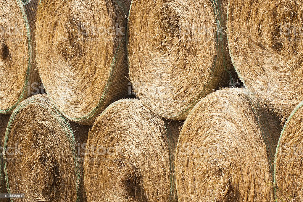 Stack of round hay bales drying outdoors royalty-free stock photo