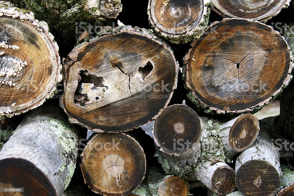 Stack of Round Logs chopped and ready for burning royalty-free stock photo