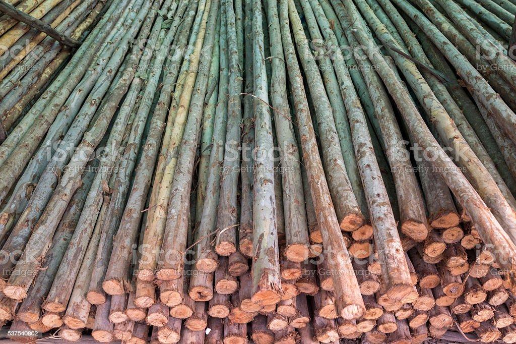 Pile de bois sciés photo libre de droits