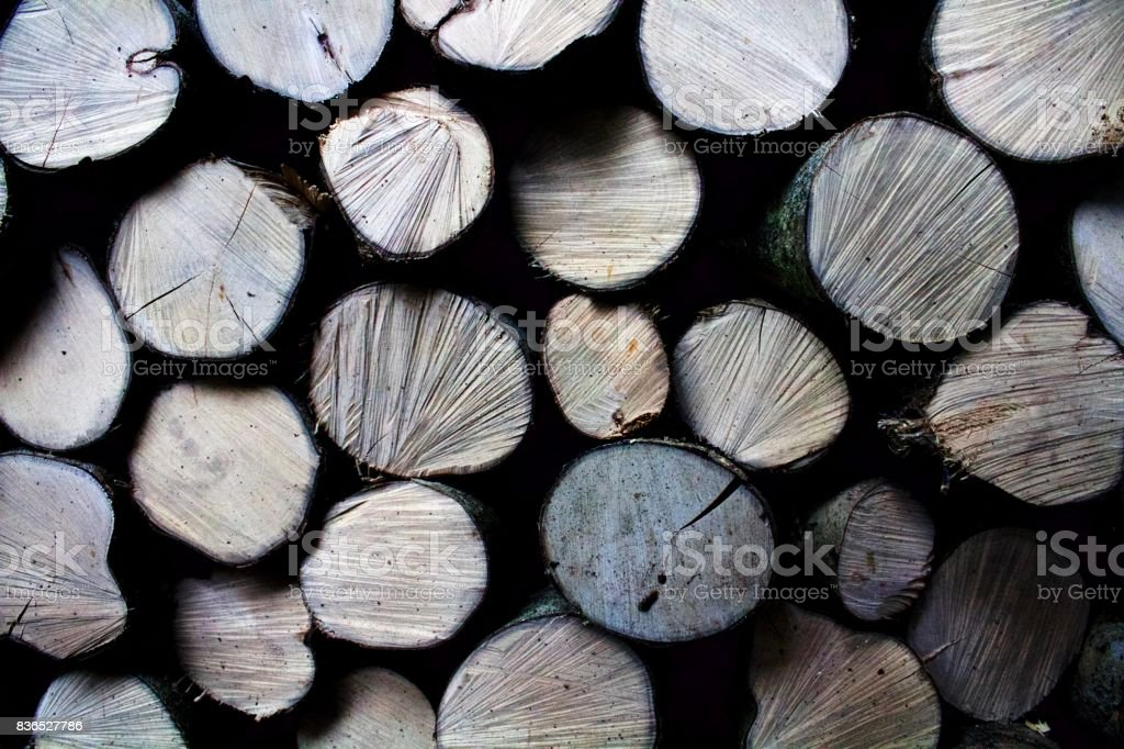 Stack of Textured Logs stock photo