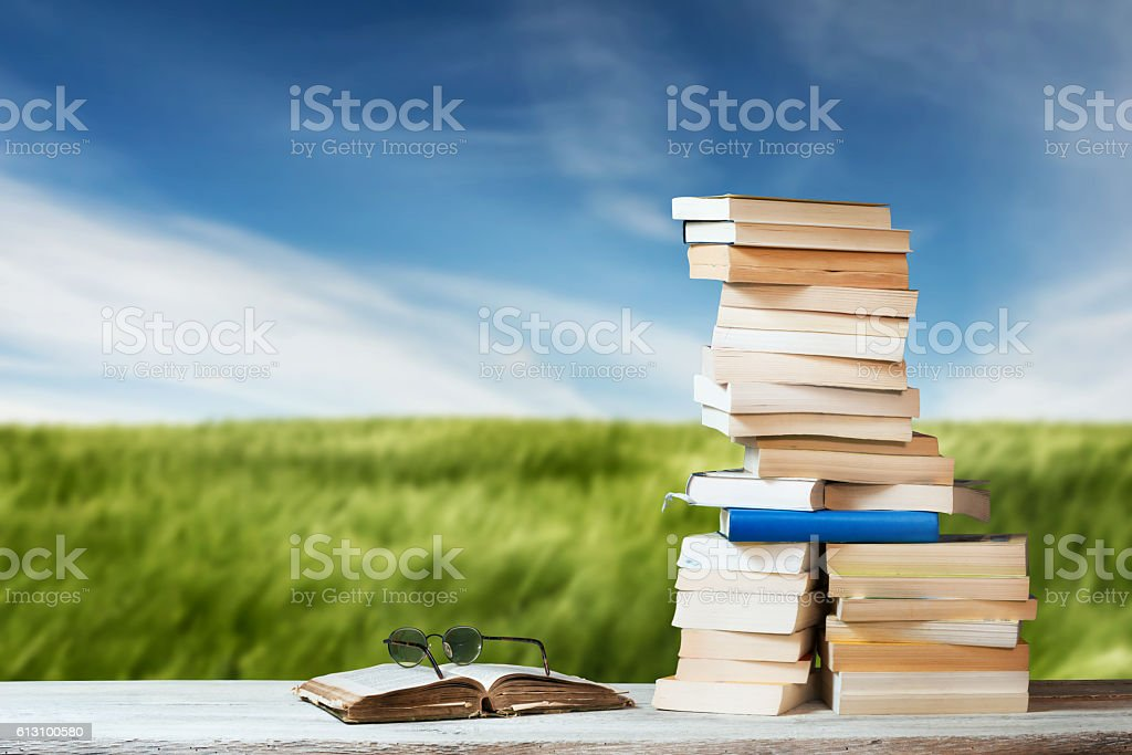 Stack of Travel Guides before a green Meadow stock photo