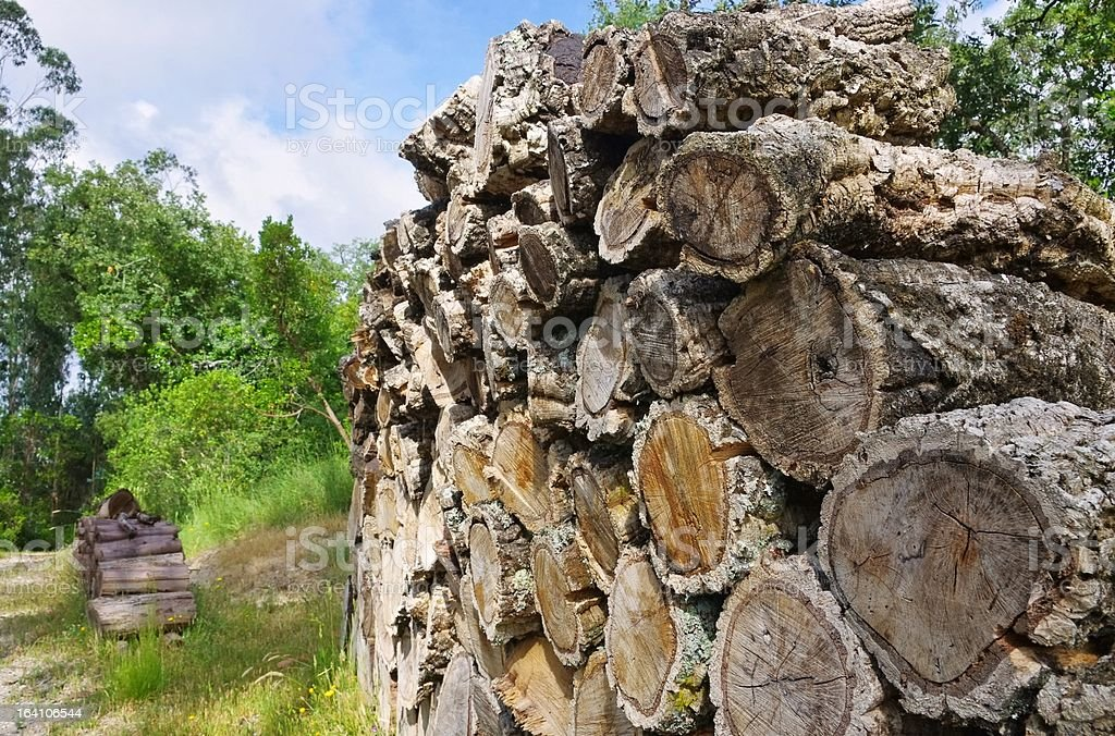 stack of wood from cork oak royalty-free stock photo