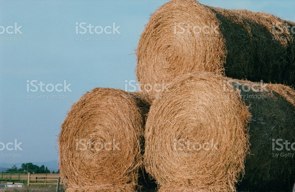 Stackable  Hay royalty-free stock photo