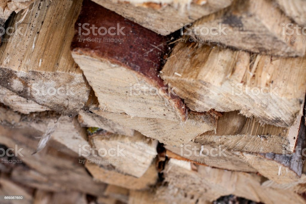 Stacked chopped firewood prepared for winter stock photo