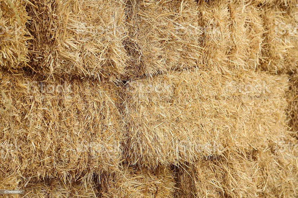 Stacked Straw Hay Bails stock photo