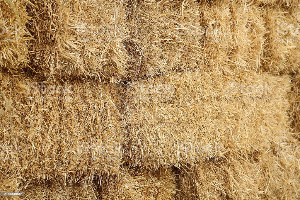 Stacked Straw Hay Bails stock photo