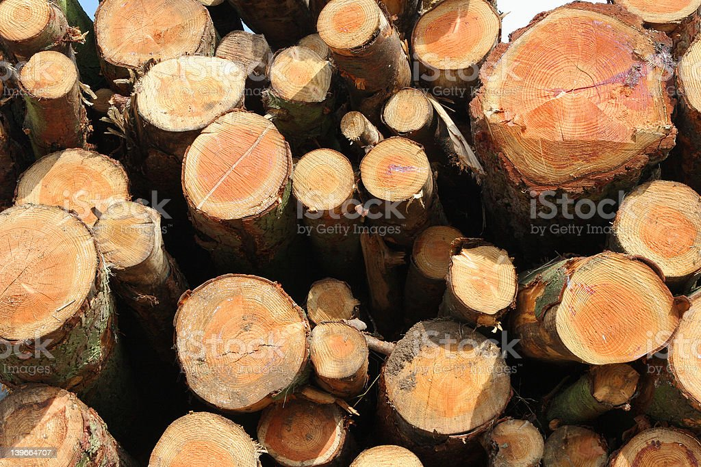 Stacked Timber royalty-free stock photo