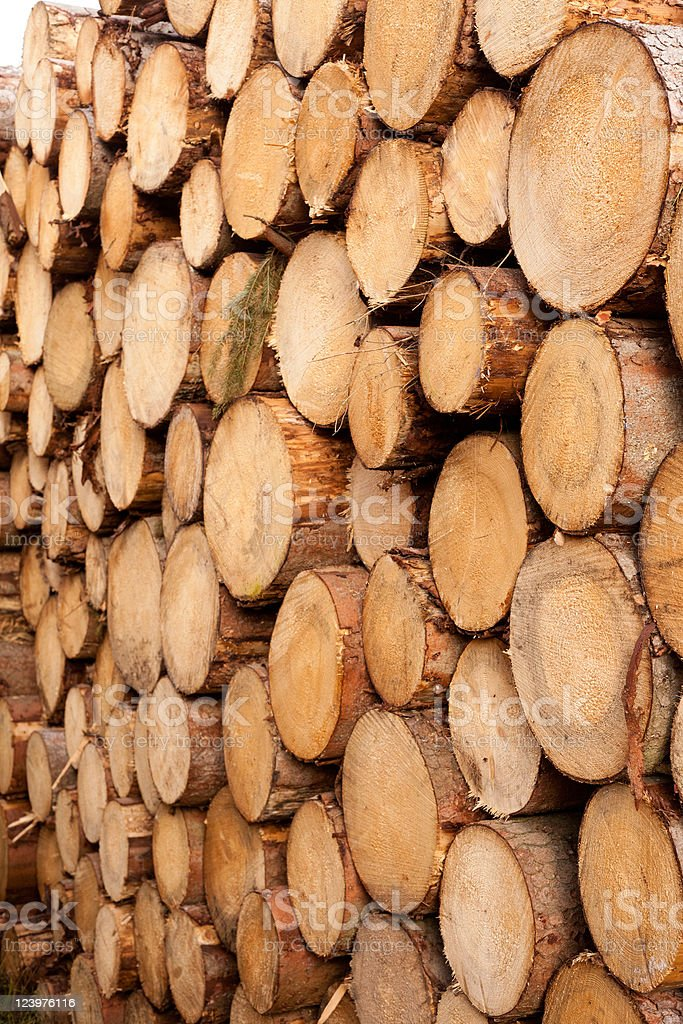 Stacked tree trunks background texture pattern. royalty-free stock photo