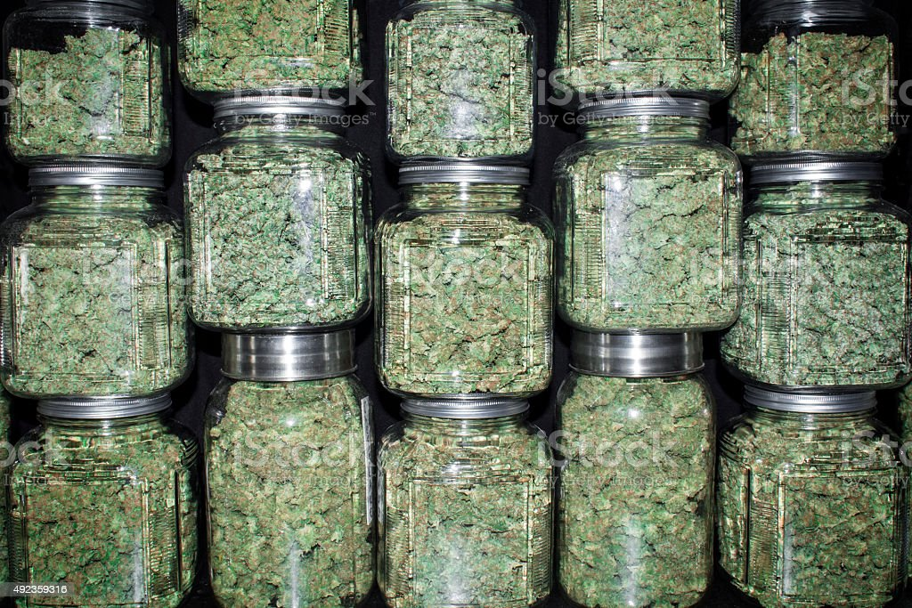Stacked Wall of Glass jars Filled with Green Marijuana Buds stock photo
