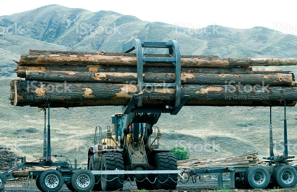 Stacker removing logs from truck in Washington state stock photo