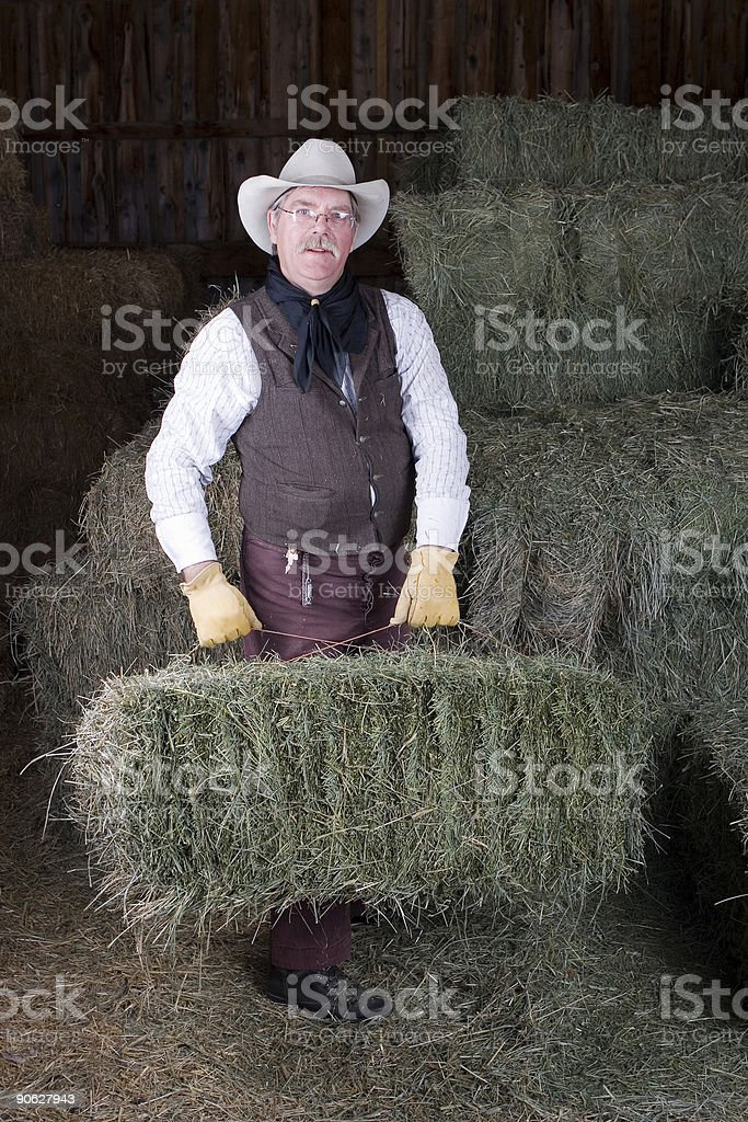 Stacking hay stock photo
