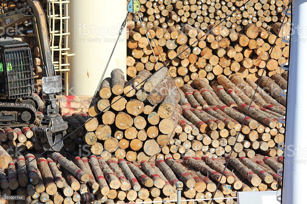 Stacking logs on a Ship stock photo