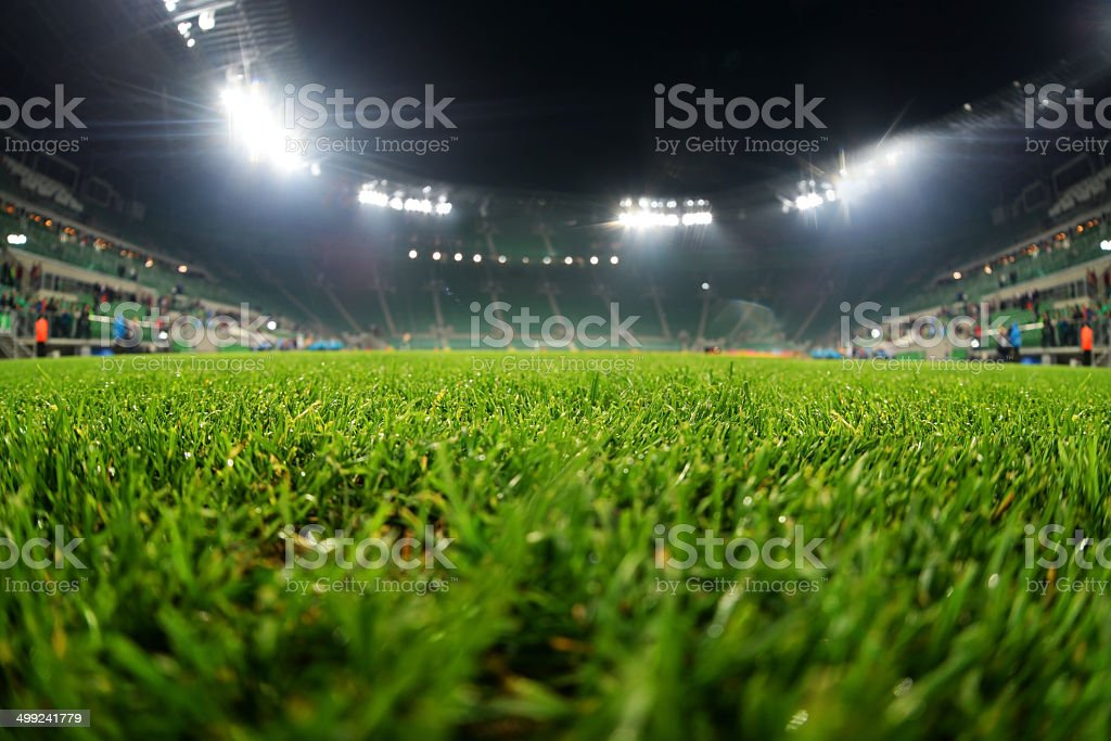 stadium, close up on grass stock photo